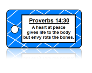 Proverbs 14:30 Bible Scripture Key Tags