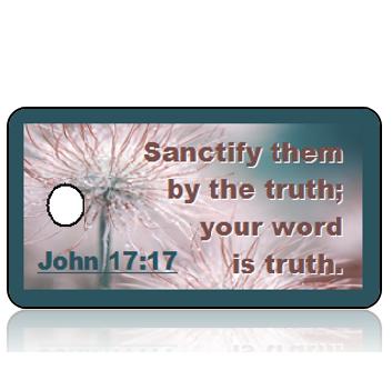 ScriptureTagD110 - NIV - John 17 vs 17 - Frozen Pasque Flowers