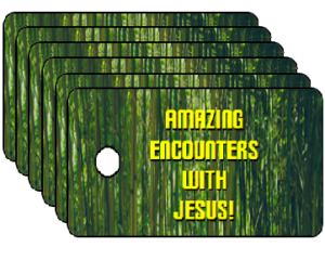 Vacation Bible School Encounters With Jesus