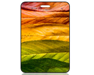 Create Design Bag Tag Fall Autumn Leaves
